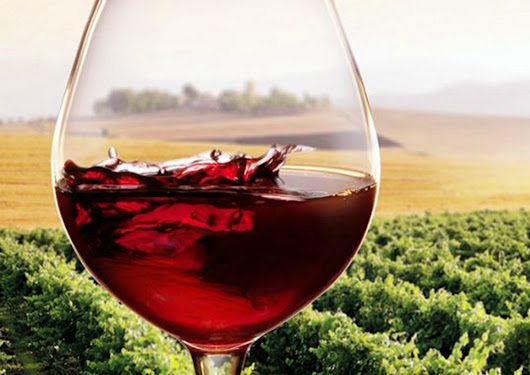 Vino Made in Italy: aumenta l'export - FOOD Web