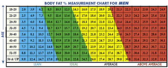 body fat percentage reference range