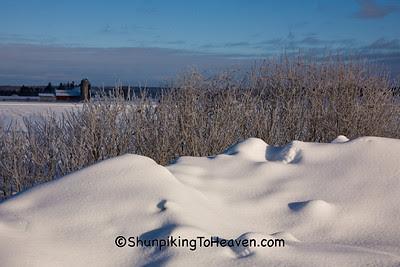 Frosty Winter Scene, Sauk County, Wisconsin