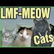 LMF-MEOW Cats, A Feline-Filled Musical Parody of Shots by LMFAO