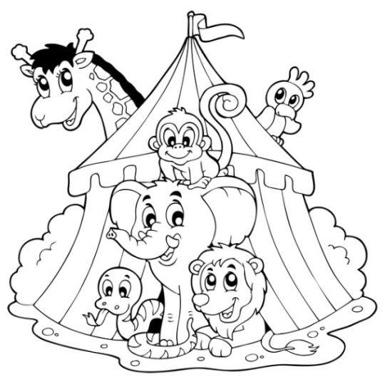 ausmalbilder zirkus ausdrucken  aglhk