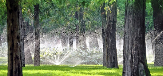 Water Sprinkler System & Irrigation Services | GroundsCare