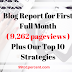 Blog Report for First Full Month (9,262 pageviews) and Our Strategies - 99to1percent