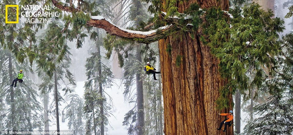 Taking on the president: