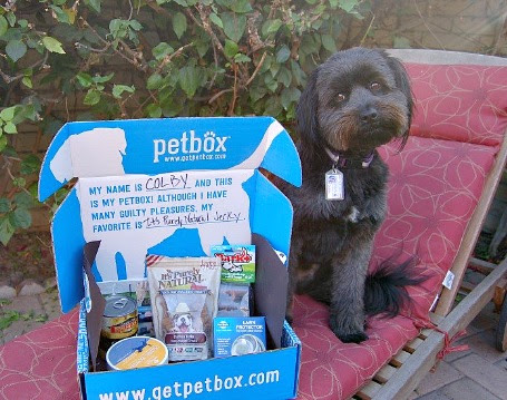 Spoil Your Pet with PetBox - Two Classy Chics
