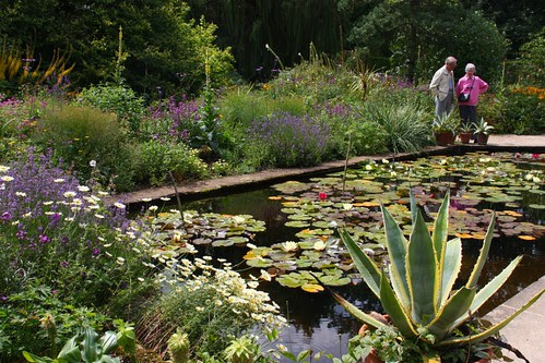Lily Pond at Hidcote