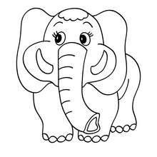 Dibujos Para Colorear Elefante Con Su Cria Eshellokidscom