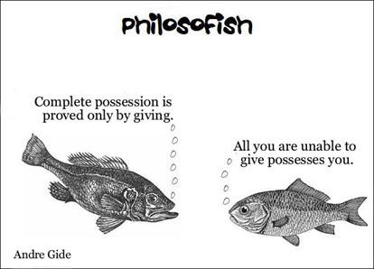 philosofish 36 small
