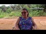 VÍDEO | Governo Cascaria desbrava estradas e leva o progresso à região dos povoados Serra do Aristóteles e Santa Rosa