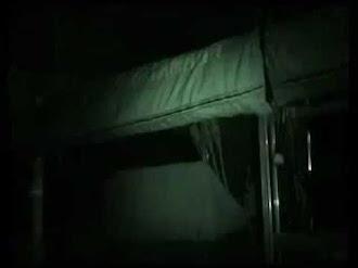 Bigfoot Screams / Gritos del Bigfoot Captados en Video