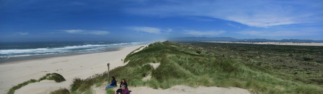 4809-Beach dune wetland pan