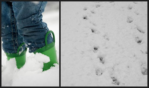 Avery snowboots