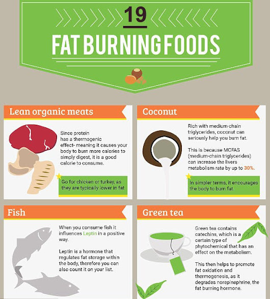 19 Best Fat Burning Foods to Eat