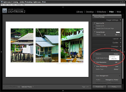 Creating a Triptych in Lightroom