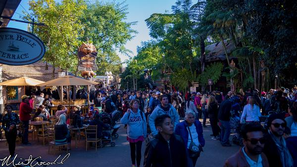 Disneyland Resort, Disneyland, Adventureland, Christmas Time, Christmas, Time