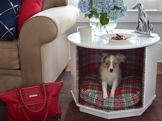 Round White Coffee Table Dog Bed | Raysa House