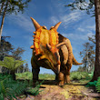 Cleveland Museum of Natural history researcher identifies new horned dinosaur