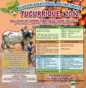 Disfrute de productos derivados del pejibaye en la Feria de Tucurrique