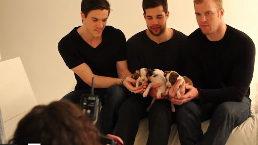 Blackhawks playing with puppies is the only video you need to see today