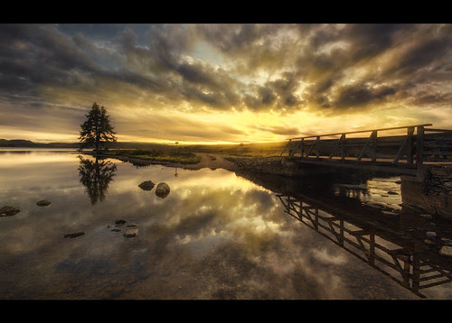 Reflections by Michael~Ashley