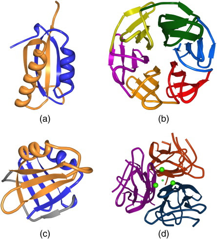 Protein Sequence and Structure Bioinformatics: Systematic Detection of Internal Symmetry in Proteins Using CE-Symm
