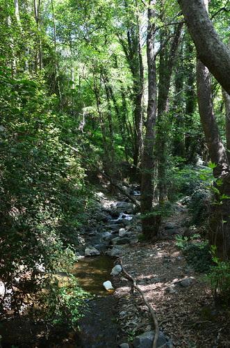 Der Bachlauf zum Wasserfall