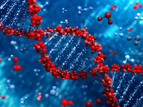 Image result for Scientists Have Discovered a Hidden DNA Structure
