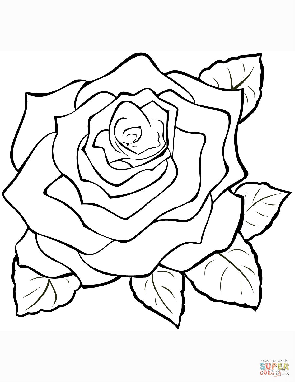 8 Rose Zum Ausmalen - Besten Bilder von ausmalbilder