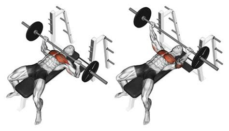 effective chest  triceps workout  building mass