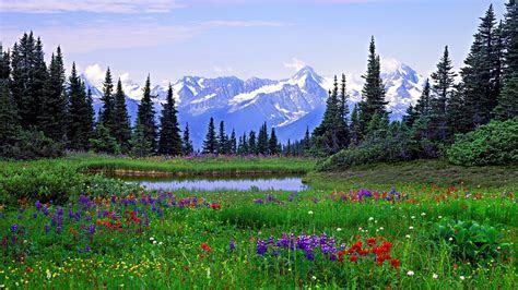 Ceremony Options   Rocky Mountain Dream Weddings