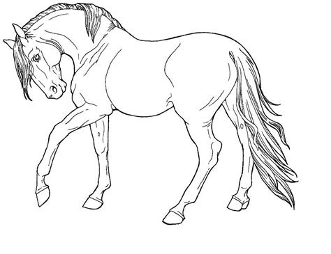 horse print  coloring pages  printable coloring