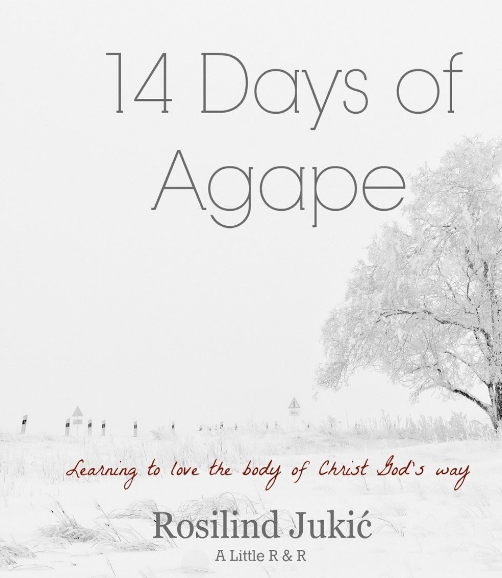 14 Days of Agape - a Book Review  {Reading List}