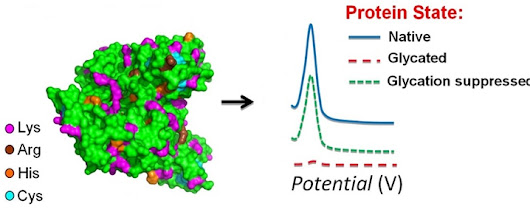Analysis of Protein Glycation