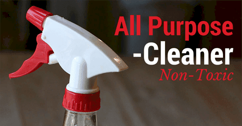All Purpose Germ Fighting Cleaner - Simple Pure Beauty