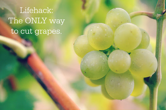 You've Been Cutting Grapes All Wrong!