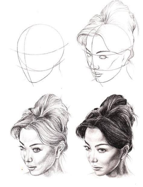 anatomy study drawings  veri apriyatno tutorial