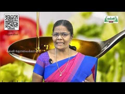 11th  Nutrition கொட்டைகள், எண்ணெய் வித்துக்கள்( ம) சர்க்கரை அலகு10 பகுதி 2 Kalvi TV