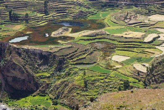 Colca Canyon - a day trip from Arequipa Peru - Travelgal Nicole