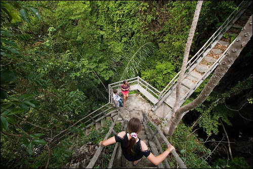 Stairway in the jungle