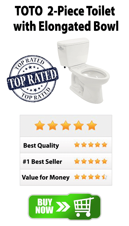 Best Toilets 2016 - Toilet Reviews - Shop Toilet