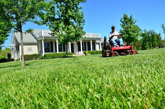 Pick up Grass Clippings? | Vin's Total Care Landscaping