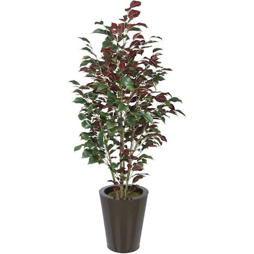 House of silk flowers inc ficus tree in planter red google express house of silk flowers inc ficus tree in planter red mightylinksfo