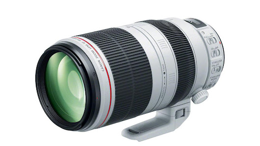 Canon EF 100-400mm f/4.5-5.6L IS II USM Lens Review | Richard Bernabe