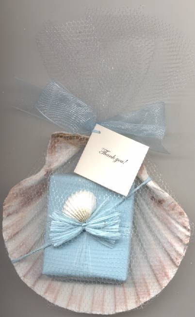 Beach Theme Bridal Shower Wedding Favors Seashells