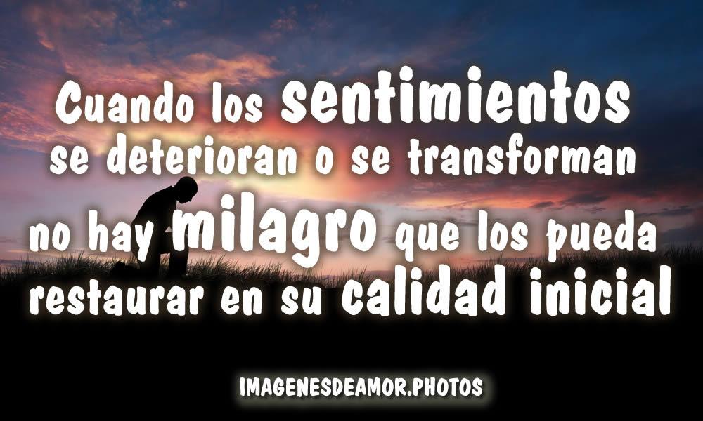 Imagenes De Tristeza Frases Tristes Cortas De Amistad Y Amor