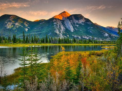 natural beauties canada landscape rocky mountains pine forest river hd wallpaper high contrast