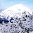Top resorts for powder snow in Japan | The Snowboarding Holiday Guide