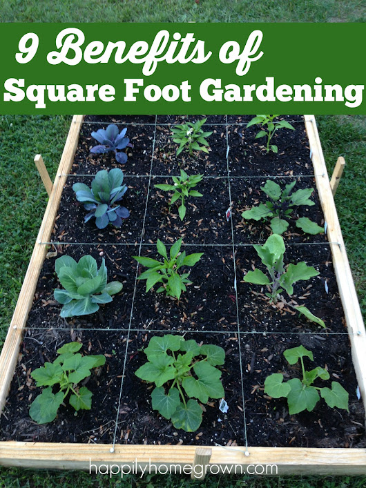 9 Benefits of Square Foot Gardening - Happily Homegrown