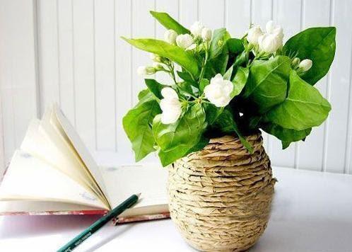 Как сделать вазу из банки