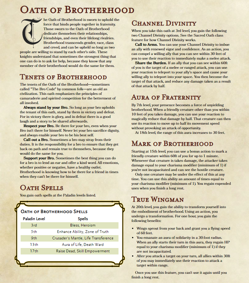 Have Your 'Dungeons & Dragons' Character Swear to the Bro Code With This Hilarious Paladin ...